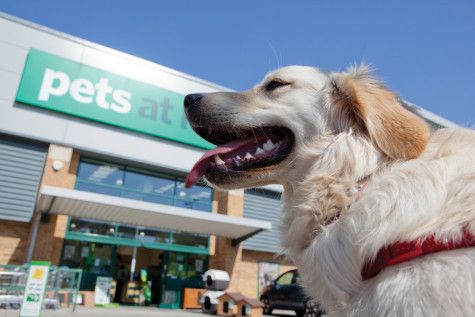 Pets at Home pleases investors with another positive update featured picture