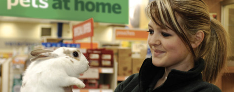 Pets at Home warns on profits as stockpiling surge unwinds featured picture